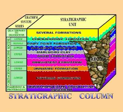 the stratigraphic column